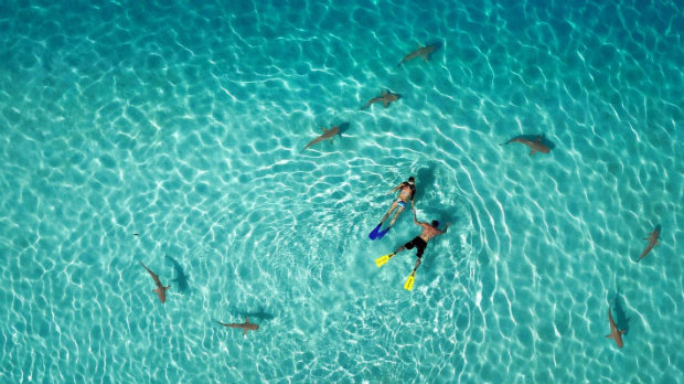the-best-of-drone-photography (7)  The Best of Drone Photography the best of drone photography 7