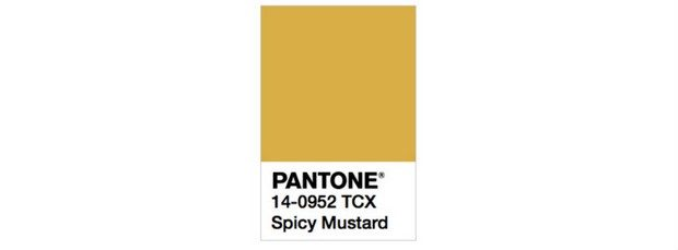 how-to-add-the-pantones-new-fall-colors-to-your-home-10 Pantone How to Add the Pantone's New Fall Colors to Your Home How to Add the Pantone   s New Fall Colors to Your Home 10 620x229