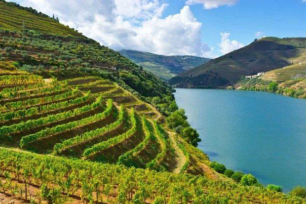 7 Luxurious and Under-the-Radar Wine Destinations Wine Destinations 7 Luxurious and Under-the-Radar Wine Destinations 7 Luxurious and Under the Radar Wine Destinations 1 620x413