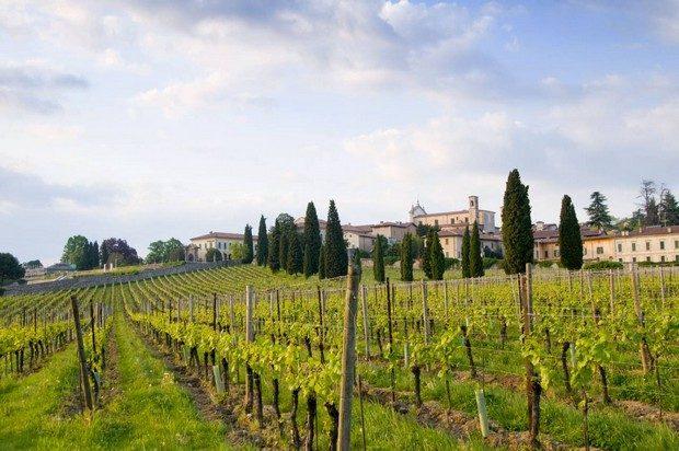 Italy, Brescia province, Franciacorta wine area, Erbusco Wine Destinations 7 Luxurious and Under-the-Radar Wine Destinations 7 Luxurious and Under the Radar Wine Destinations 4 620x412