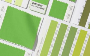 pantone-color-of-the-year-2017-is-greenary-17
